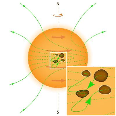 Sonnenfleckenzyklus: Verzerrte Magnetfeldlinien werden als Schleifen durch die Sonnenoberfläche gedrückt