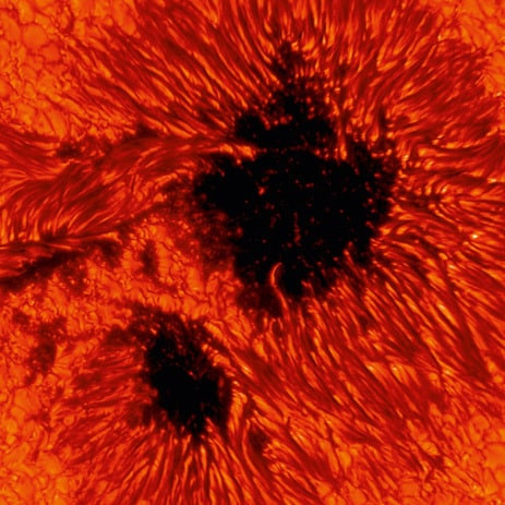 Spiel der Energien: Mehrere tausend Grad heißes Plasma steigt aus dem Innern der Sonne nach oben, kühlt sich ab und sinkt wieder in die Tiefe. Dort wo starke Magnetfelder das Plasma festhalten … [mehr] © Max-Planck-Institut für Sonnensystemforschung, Göttingen / Johann Hirzberger
