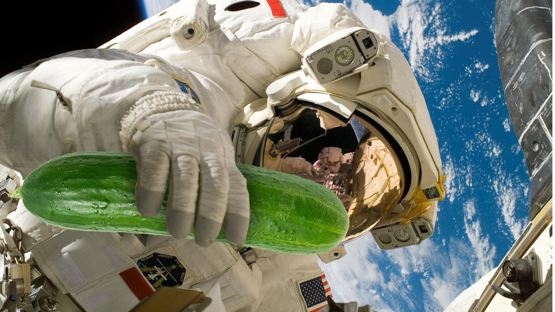 Kann man im Weltraum Gemüse züchten? 1