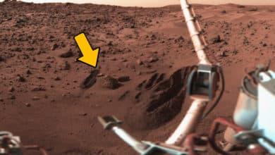 Wurde auf dem Mars schon längst Leben entdeckt? 4