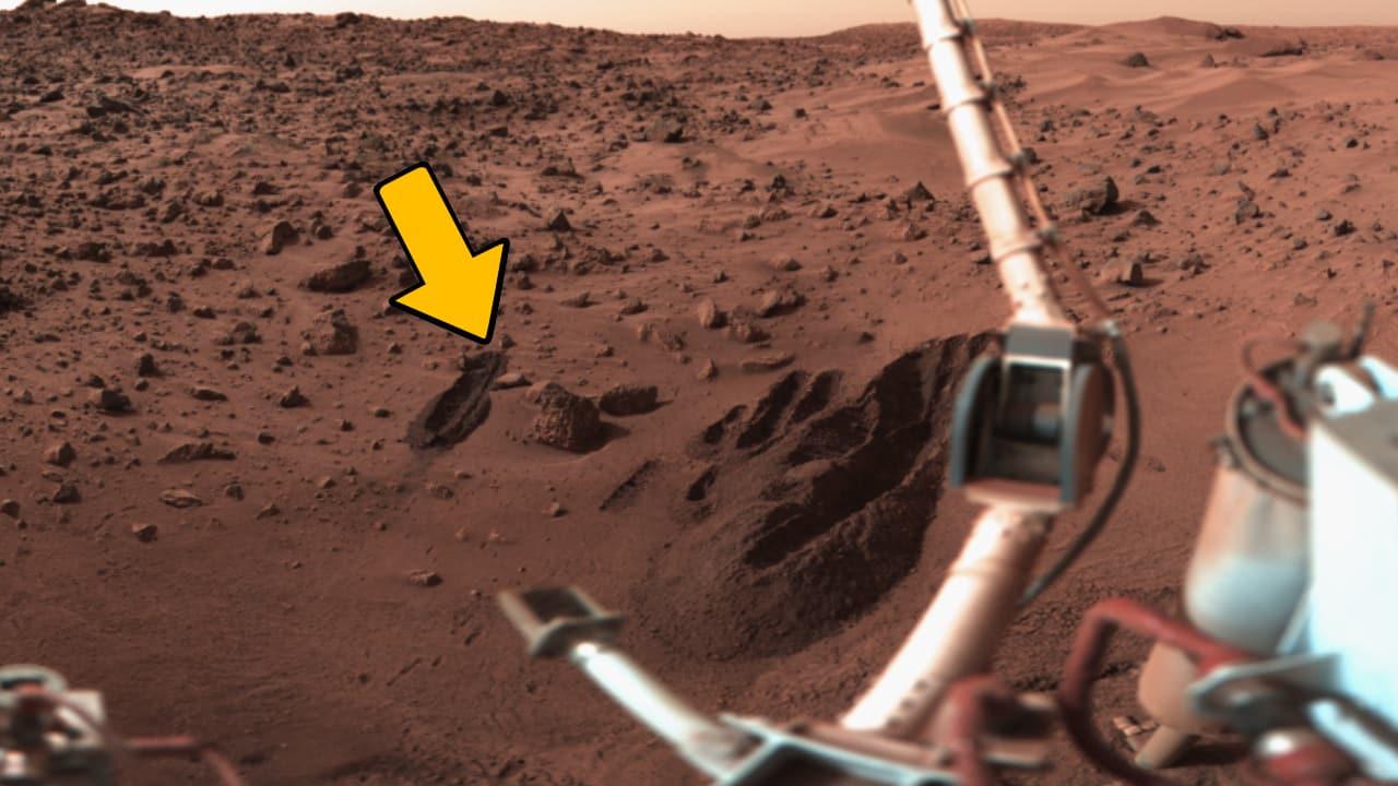 Wurde auf dem Mars schon längst Leben entdeckt? 1
